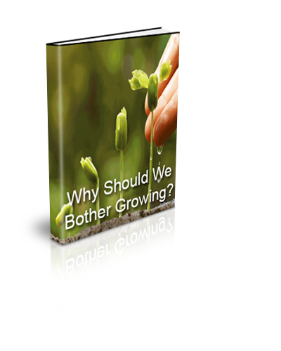 2. Why Should We Bother Growing?