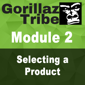 Module 2 - SELECTING A PRODUCT
