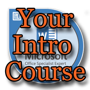 Your Intro Course